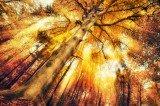 Astralreisen Foto: ©  Smileus @ Fotolia